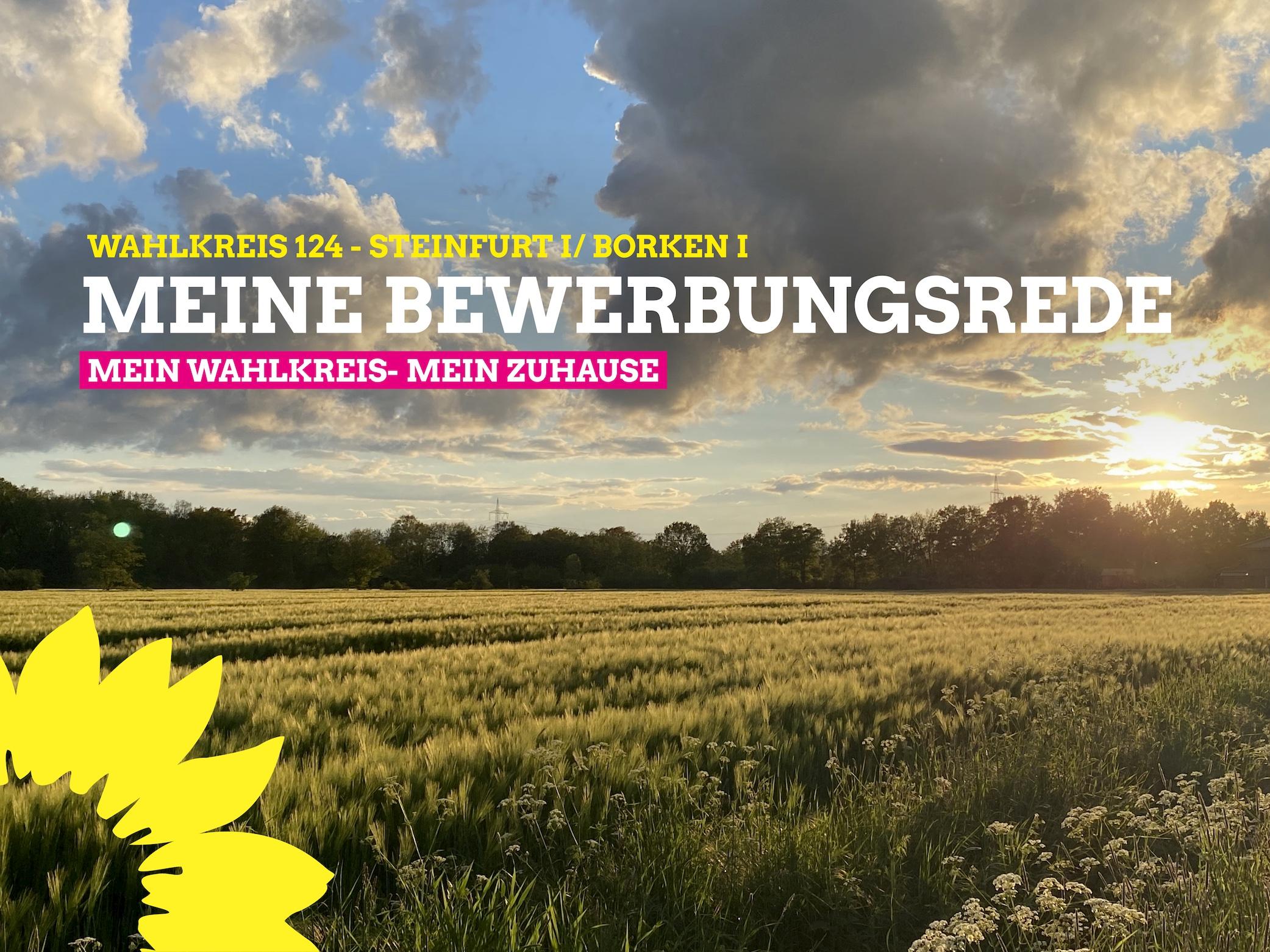 Meine Bewerbungsrede als Direktwahlkandidatin für Steinfurt I/ Borken I